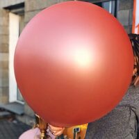 Воздушный шар  / Delight