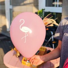 Воздушный шар / Flamingo